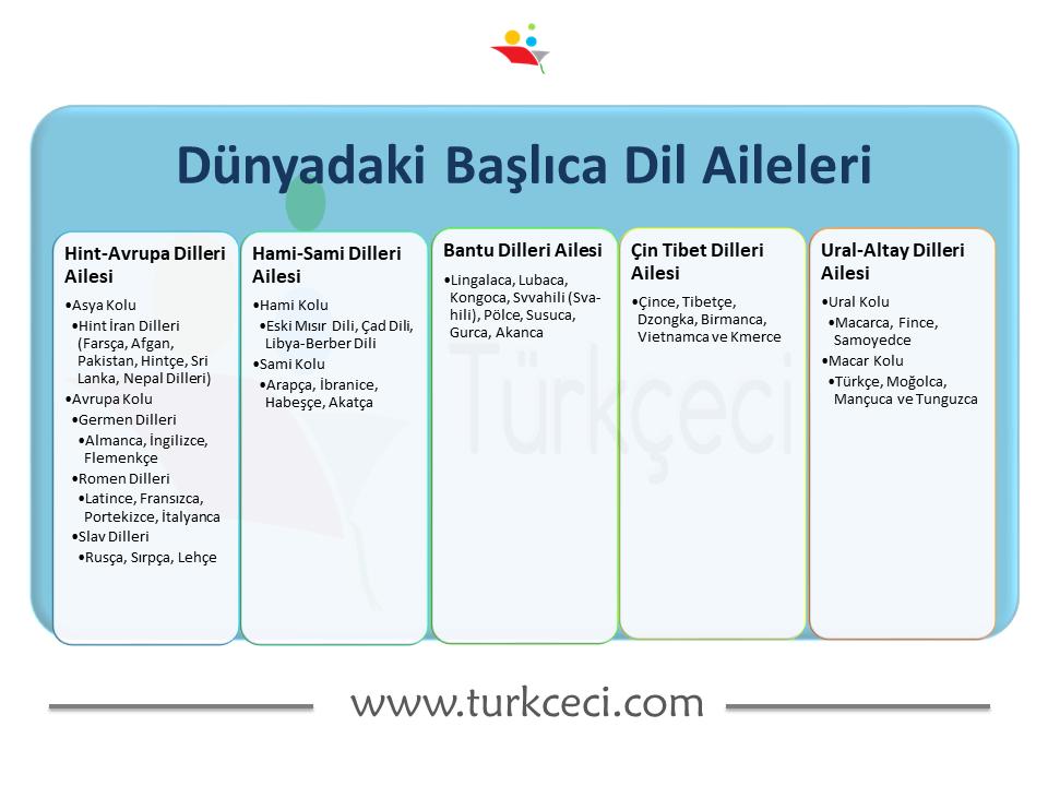 9. Sınıf Dillerin Sınıflandırılması Konu Anlatımı